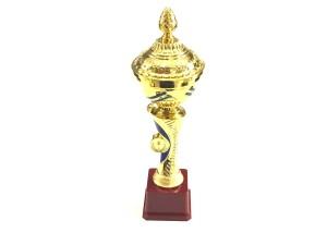 - Ödül Kupası 2020-B