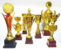 - Ödül Kupası 2012-B (1)