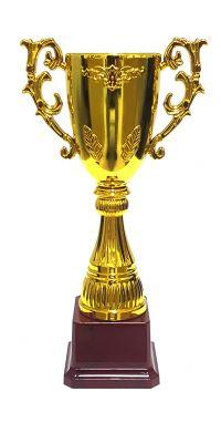 - Ödül Kupası 2015-C