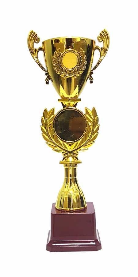 Ödül Kupası 2018-C