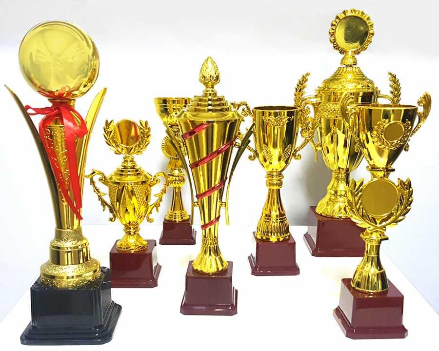 Ödül Kupası 308-B