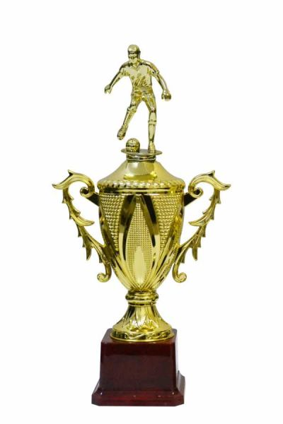 - Ödül Kupası EG-6C Figürlü (1)